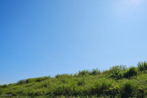 草むらと青空