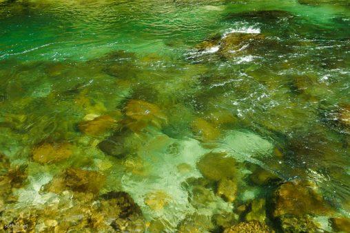 透き通った川