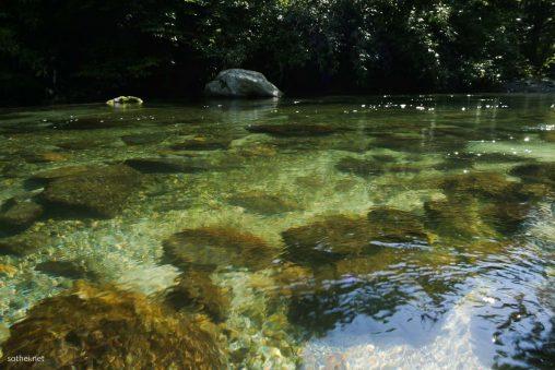 透き通る川