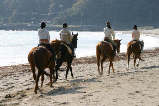 浜辺の乗馬女子