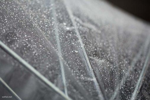 ビニール傘に雨粒