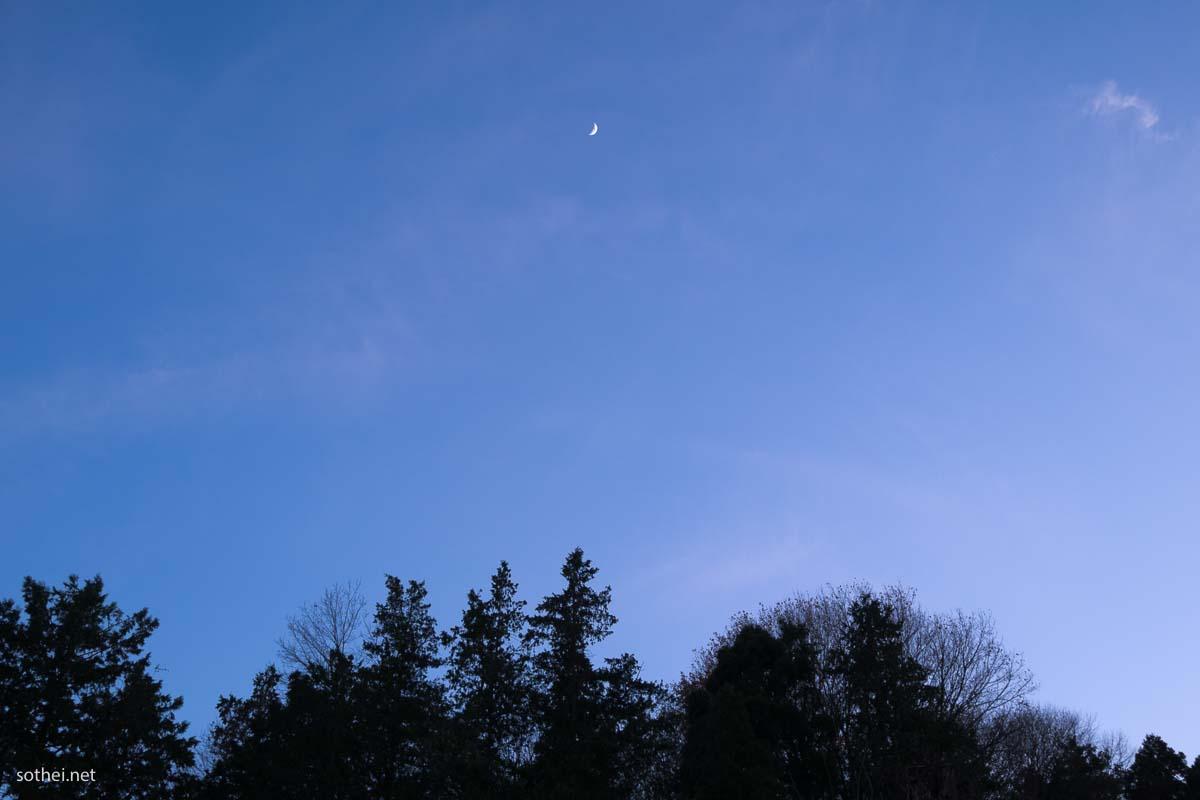 森の上の月