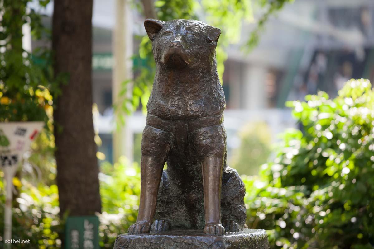 渋谷の忠犬ハチ公像