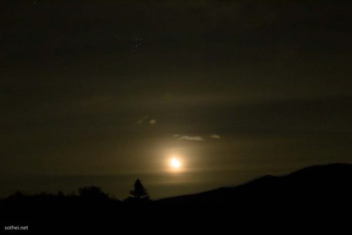 夜の森に登る月
